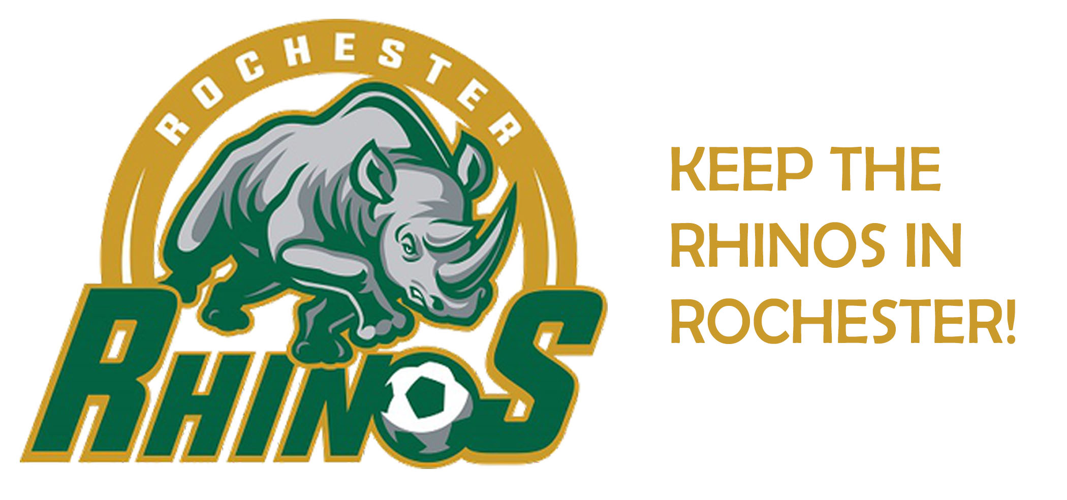 The Rochester Rhinos Need Your Support!
